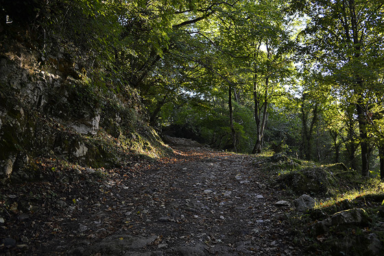 дорога к холму над гелати