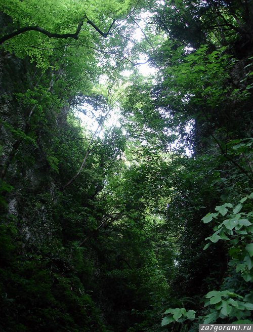 Ущелье на склоне хребта Урта