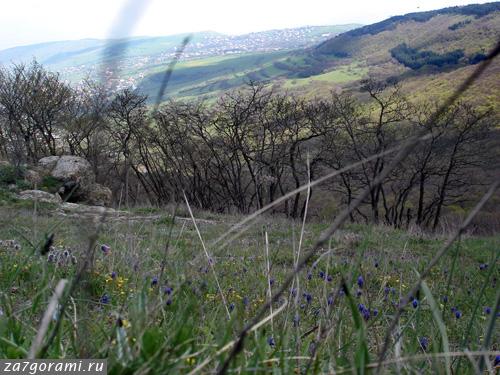 Панорама с горы Удзо