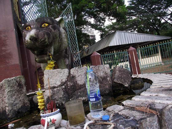 Голова Тигра, Храм пещеры тигра