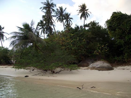 пляж на ко пхангане, около тонг салы