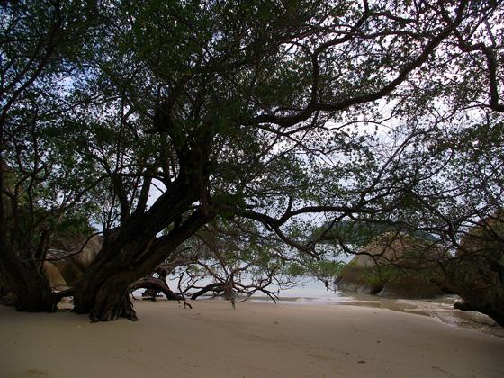 пляжи пхангана