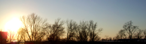 весеннее солнце
