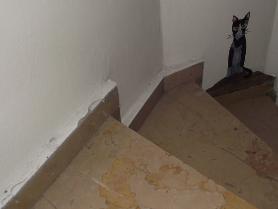 Хостел Stray Cat в Стамбуле