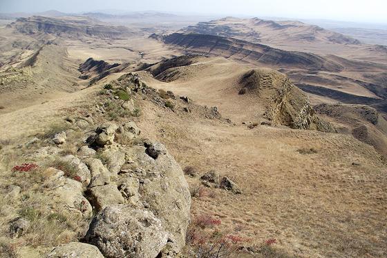 ландшафт, в котором обитает кавказская агама
