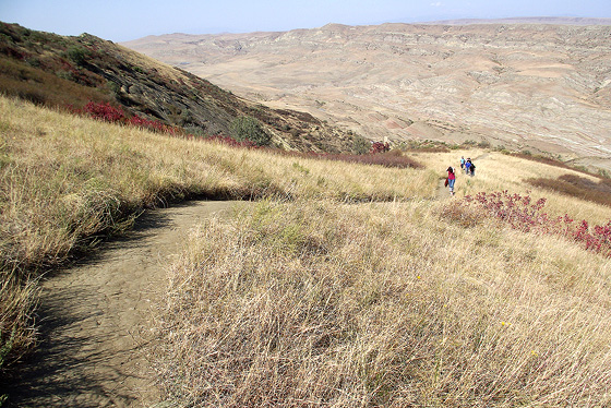 места, где водится кавказская агама. подъём на гору Удабно