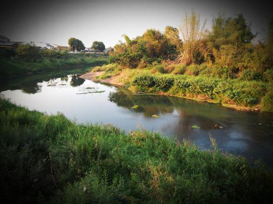 река в Лее