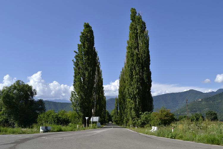 дорога на некреси