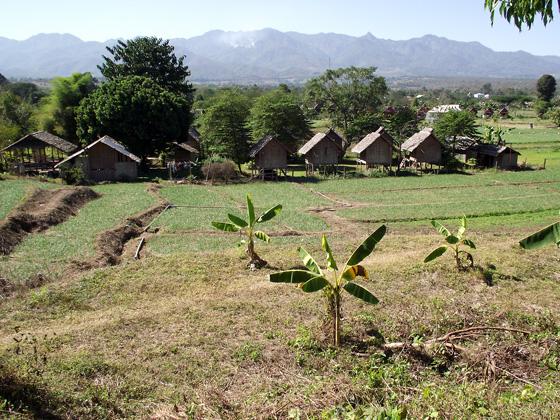 Бунгало в Пае