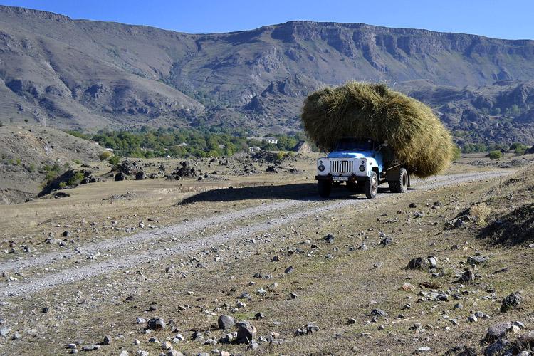 грузовики из зеда тмогви