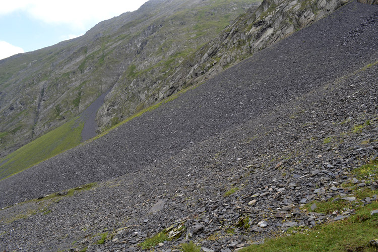 альпийские луга в Тушети