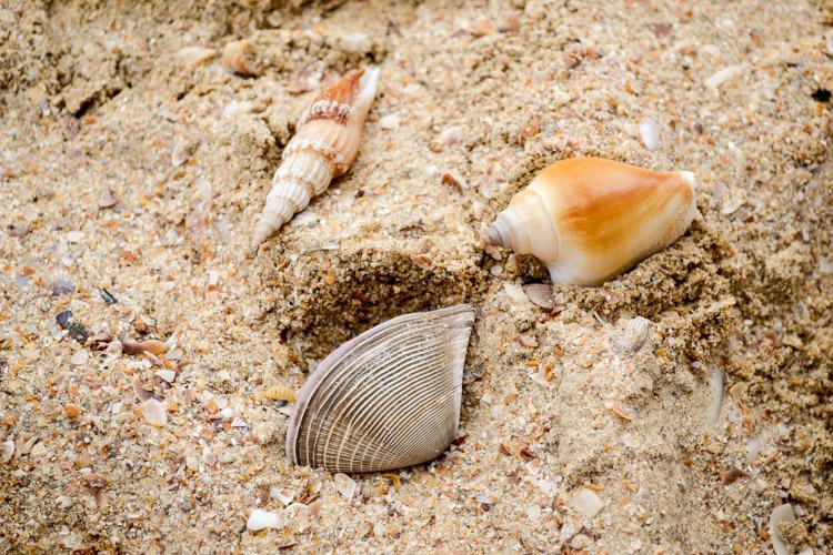 ао нанг, песок пляжа