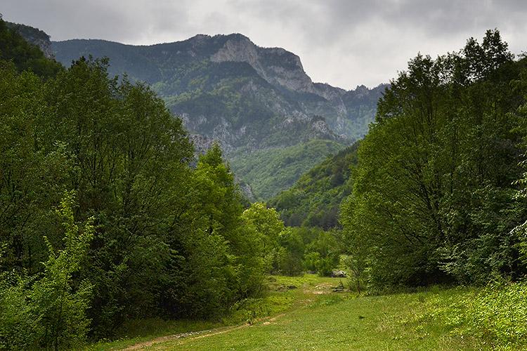 горы в бачково