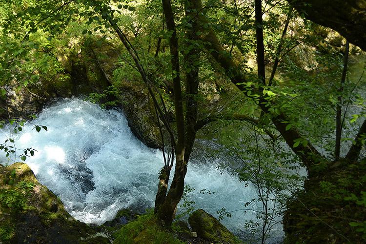 экотропа бяла река