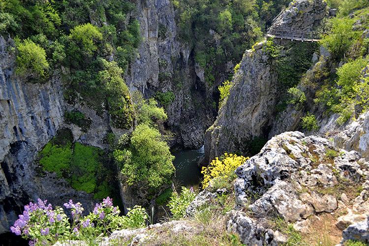 каньон реки негованка