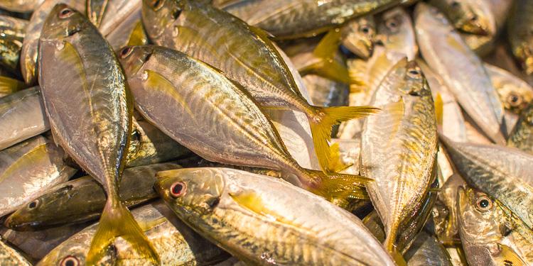 Рыба на рынке в Ао-Нанге