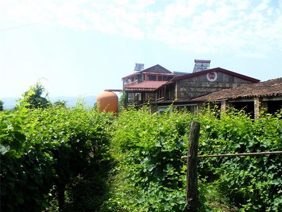 Марани близнецов, Кахетия, Грузия