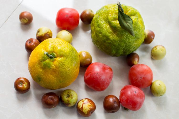 фрукты в китае в октябре