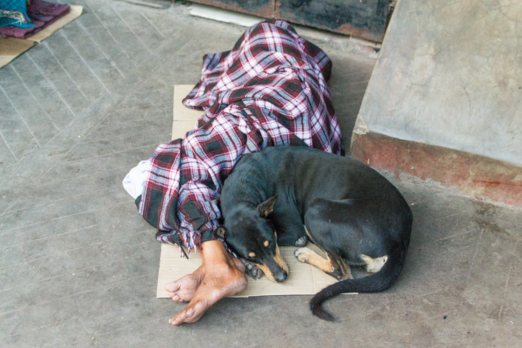 Индийский бездомный, Калькутта