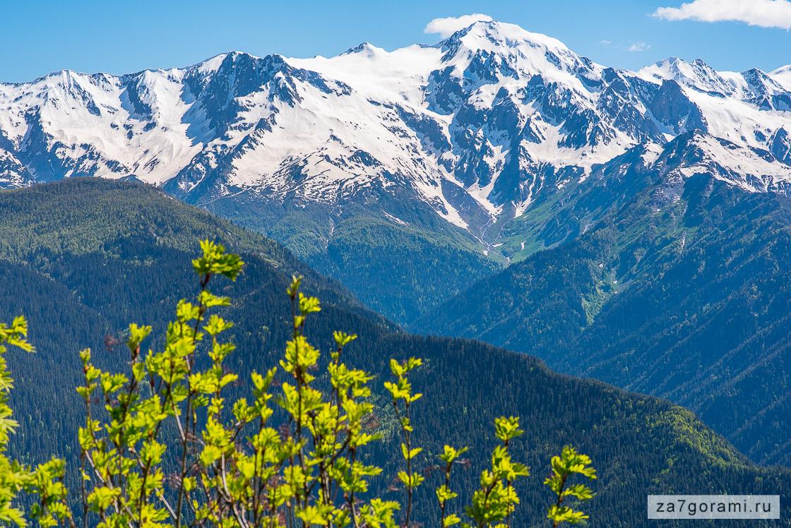 весна в горах грузии