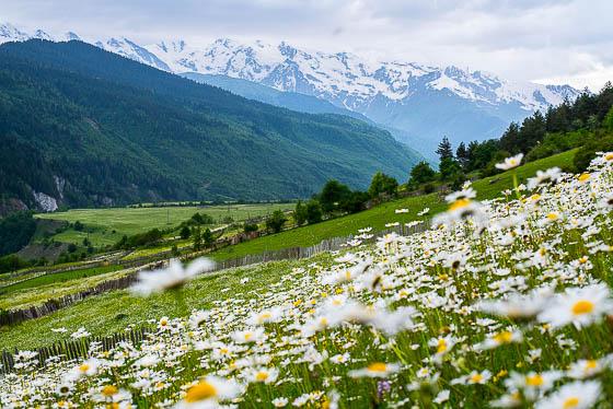 грузия, горы