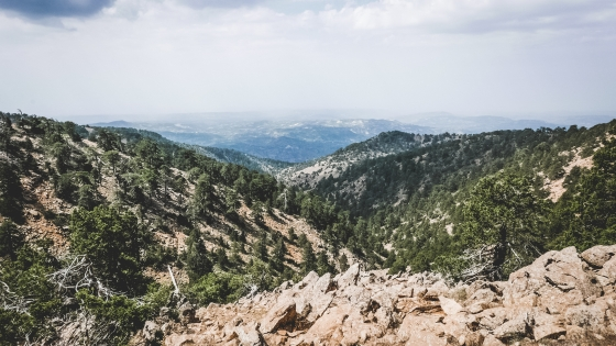 Горы Троодос на Кипре